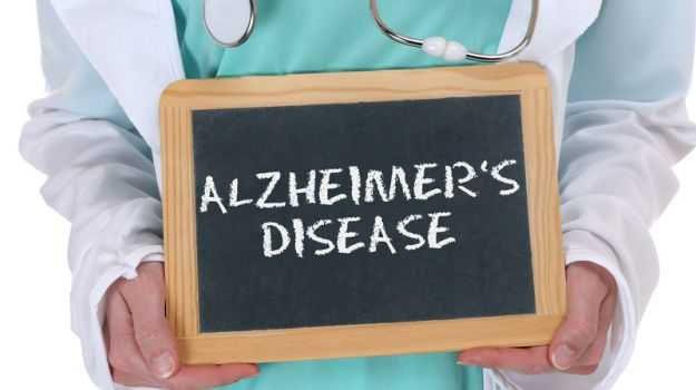 Indulge in Indian Foods to Cut Alzheimer's Risk