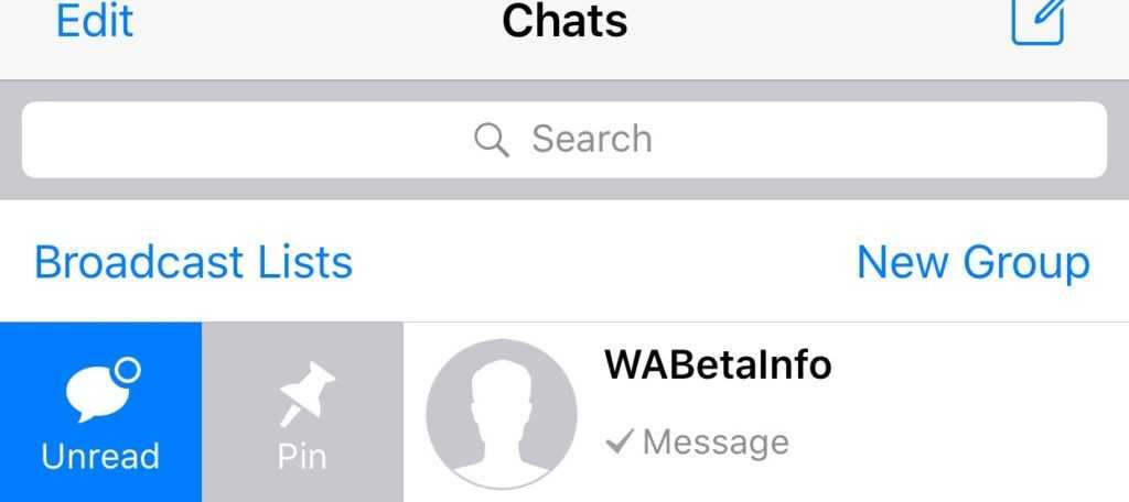 Whatsapp iOS pin chart